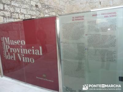 Visita enológica a Peñafiel – Ribera del Duero; sitios a visitar en madrid